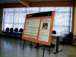 Painel utilizado para demonstrar a construção passo a passo das categorias do portal.
